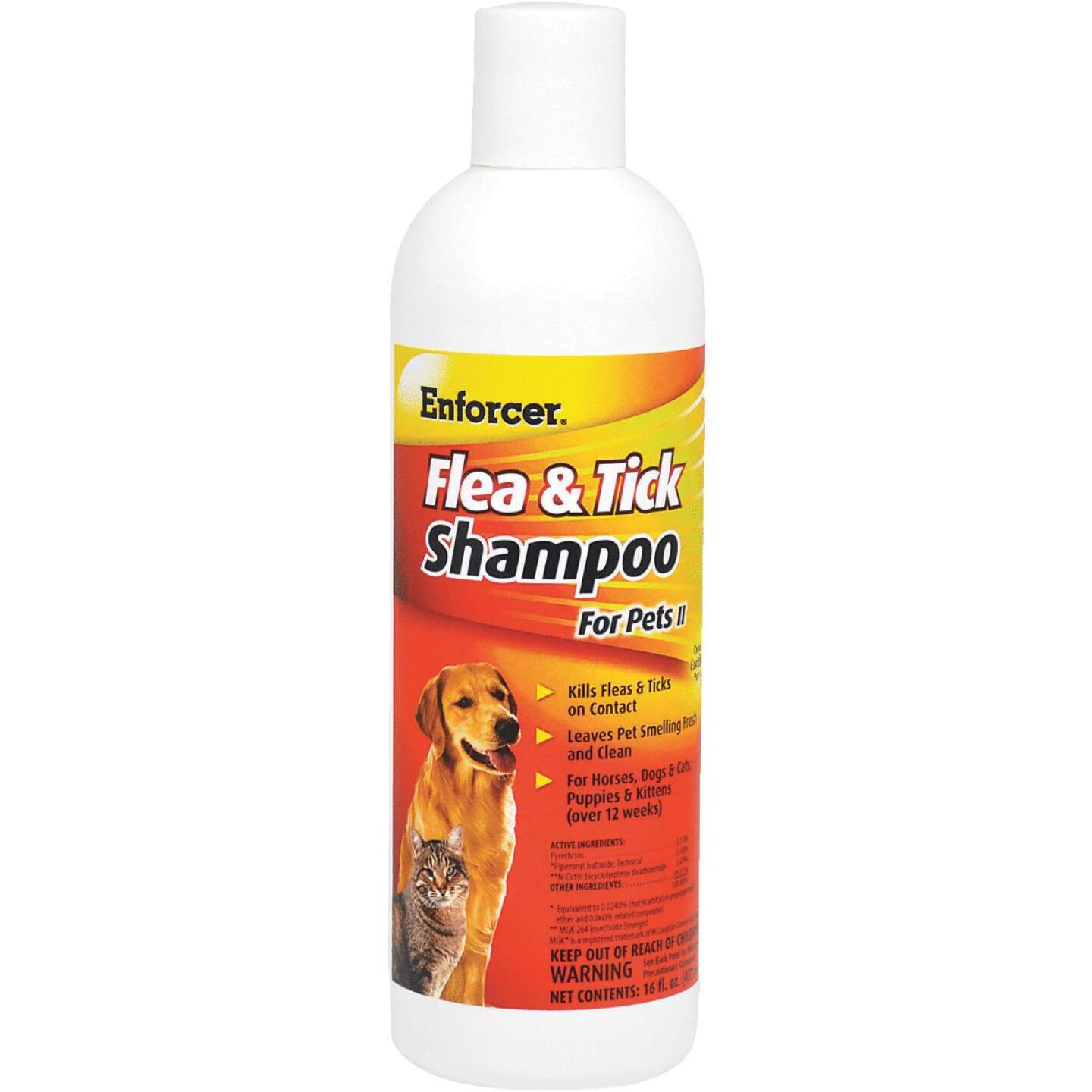 Enforcer 16 Oz. Flea & Tick Pet Shampoo Image 1