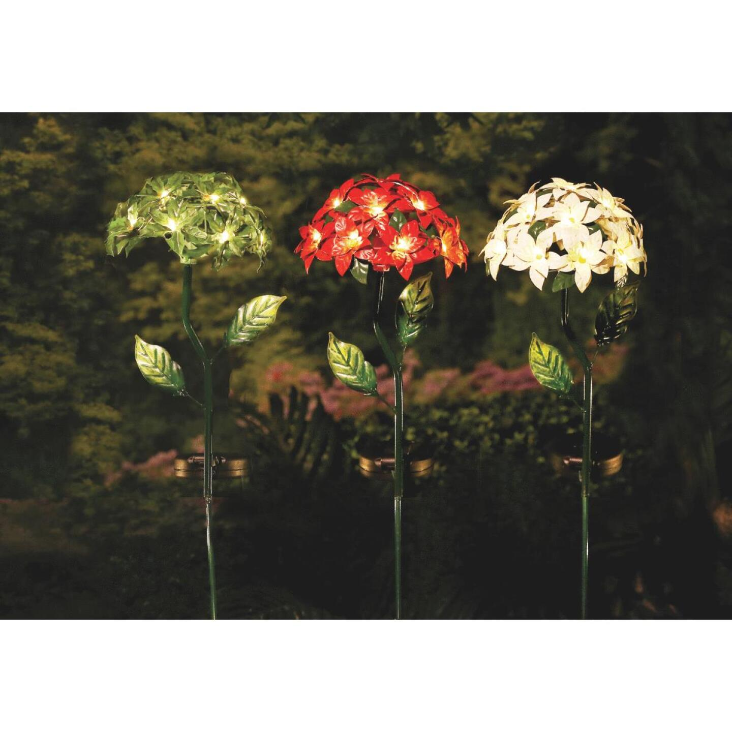 Alpine 20 In. LED Poinsettia Solar Stake Light Image 2
